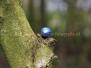07-04-2012-paaseieren-zoeken-zwolle-zuid